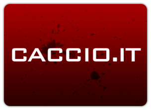 Caccio.it